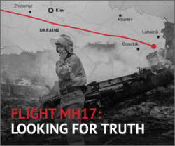 MH17 Looking for truth.png